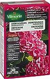 Vilmorin 6428299 - Abono de liberación lenta para hortensias, camelias y azaleas, 800g