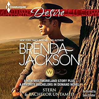 Stern & Bachelor Untamed audiobook cover art