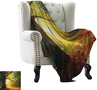 BelleAckerman Travel Throw Blanket Leaves,Majestic Mighty Oak Tree with Largely Broader Leaves Forest Sun Rays Nature, Orange Green Brown for Bed & Couch Sofa Easy Care 60
