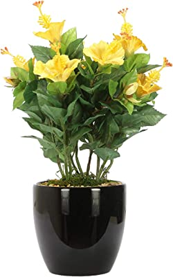 Fourwalls Artificial Hibiscus Flowers in Glazed Ceramic Vase (Yellow)
