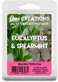Eucalyptus & Spearmint - Scented All Natural Soy Wax Melts - 6 Cube Clamshell 3.2oz Highly Scented!