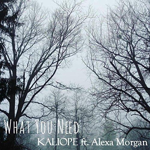 What You Need (feat. Alexa Morgan)