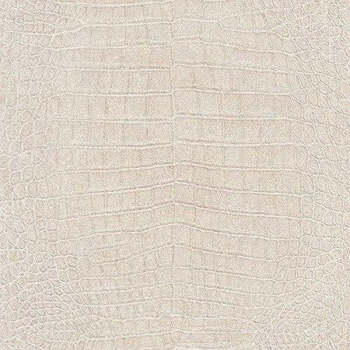 African Queen Wallpaper Collection 474152