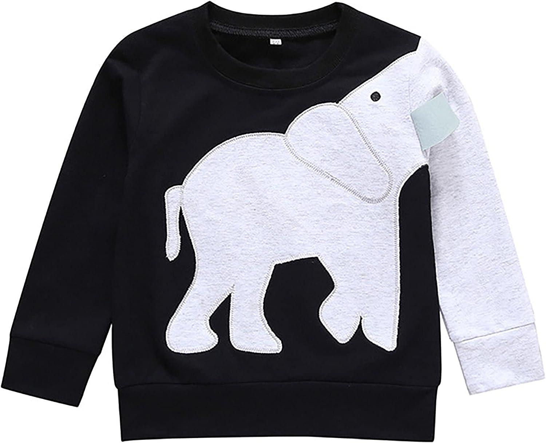 LuckyCandy Toddler Boys Sweatshirts Long Sleeve Tops Child Pullover Elephant Print Top