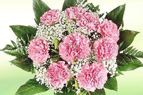 Nelkenstrauß - Blumenstrauß mit rosa Nelken, Schleierkraut und Schnittgrün