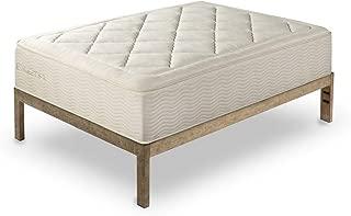 The Frame  Gold Brushed Steel Frame Platform Metal Bed Frame/Mattress Foundation, No Boxspring Needed, Wooden Slat Support, Queen, 14