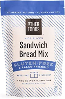 Sponsored Ad - Gluten-Free Sandwich Bread Mix - Easy Bake, Grain-Free, Dairy-Free, Paleo Friendly Baking Mix by Other Foods