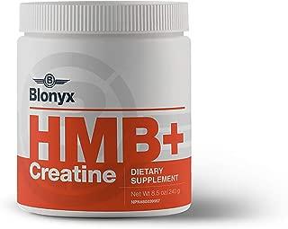 h-500 supplement