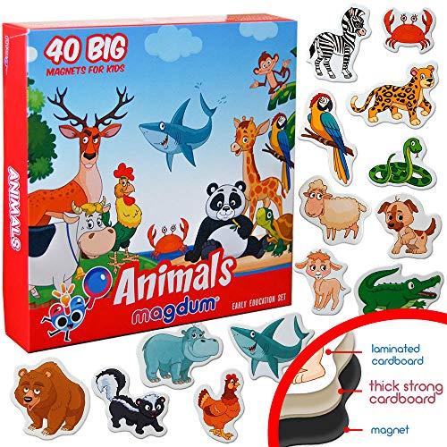 MAGDUM Zoo + Bauernhof Tiere 40 Magnete für Kinder - echte GROßE Kühlschrank Magnete für Kleinkinder- magnetisches Theater Lernspielzeug – Spiele für 3 Jährige – Magnet Spiele für Kinder