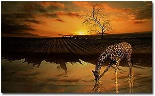 OKOUNOKO Pintura Por Conjunto Digital, Jirafa, Agua Potable, Cuadro Para Colorear Lienzo, Decoración Del Hogar, Con Marco, 40X50Cm