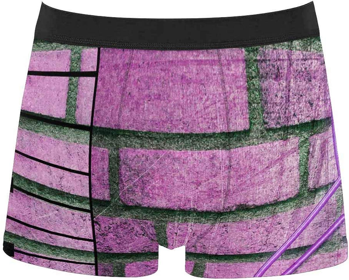 InterestPrint Men's Underwear Boxer Briefs Underwear for Juniors Yoth Boys Music Notes with Dragonfly