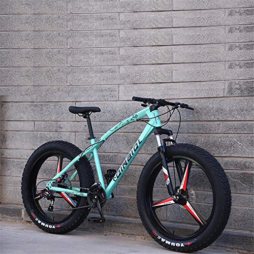 4.0 fat tire bicycle 24 inches, used for mountain and snow cross-country male and female students' adult bicycles Bianchi Green-21 speed