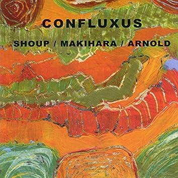 Confluxus