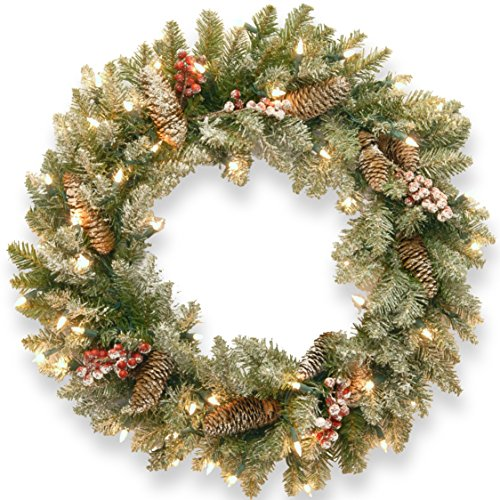 "National Tree 24"" Dunhill(R) Fir Wreath with Clear Lights"