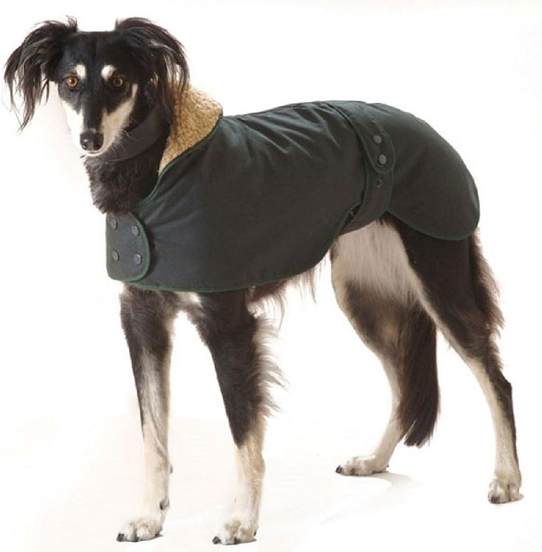 PaylesswithSS Greyhound Hunter Dog Coat (28in)