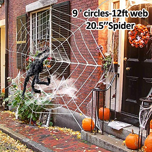 Halloween Spider Decorations, Halloween Scary Hairy Spider Web Set, 1 Pack Larger Fake Spider, Halloween Spider Web, Cobwebs Props for Indoor, Outdoor and Yard Creepy Decor (Black Web)