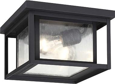 Sea Gull Lighting - Lámpara de techo para exteriores (2 luces), Contemporáneo, Two-Light, Acabado negro