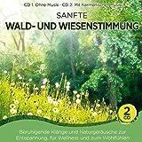 Naturklang: Sanfte Waldstimmung und Wiesenstimmung; Beruhigende Klänge und Naturgeräusche zur Entspannung; für Wellness und zum Wohlfühlen; CD 1: ohne Musik; CD 2: mit harmonischer Musik; Wald und Wiese (Audio CD)