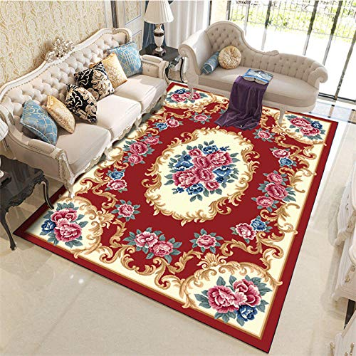 TANGYUAN touch Pile Living Room Area Rugs Non Shedding - The bedroom carpet is exquisite and leisure quality. The carved ethnic country is elegant and easy to clean.-120x160cm