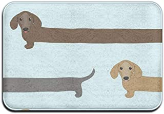 Bikofhd Dachshund Dog Concise Runner Doormats For Your Entry Modern Art Deco Doormat Mat (Size:23.6(L) X15.7(W)) Absorban...
