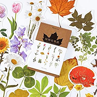 Cards & Card Stock - 30 Pcs/lot Vintage Plant flower Collection series Postcard Set Letter Envelope Greeting Message Cards...