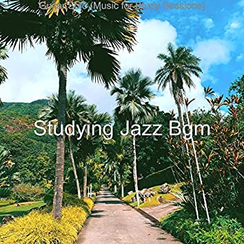 Guitar Solo (Music for Study Sessions)