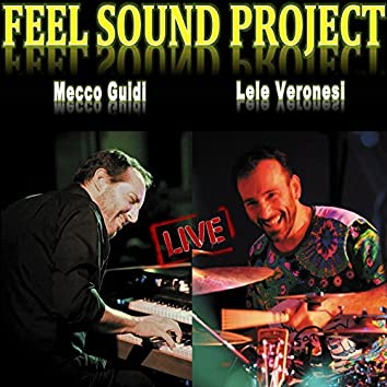 Feel Sound Project Live