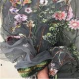 YOUMU Tela de Encaje Floral Bordado Malla Negra para Vestido de Novia de Tela,47' Ancho, Vendido por Metro (Gris Claro)