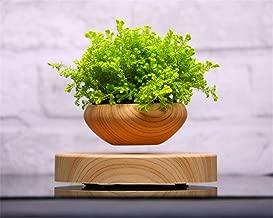 Best hovering flower pot Reviews