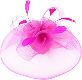 Women's Elegant Flower Feather and Veil Fascinator Cocktail Party Hair Clip Hat