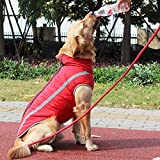 Zoom IMG-1 idepet cappotto impermeabile per cani