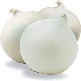 Crystal White Wax Onion Seeds, 500+ Premium Organic Heirloom Seeds, (Isla's Garden Seeds), Non GMO, Survival Seeds, 90% Germination Rates