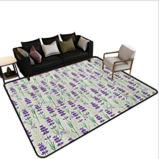 Lavender Rugs for Living Room Botanical Pattern with Fresh Herbs Aromatherapy Spa Theme Bedroom Carpet Pale Sage Green Violet and Green Area 6'x9'
