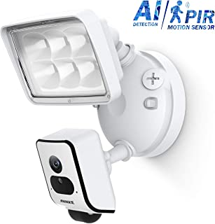 ANNKE AI Floodlight Camera Smart WiFi Home Security System, PIR Motion-Activated, 1080P HD Remote Viewing + Two-Way Talk Siren Alarm, Cloud Storage Available w/APP Alarm Push, White
