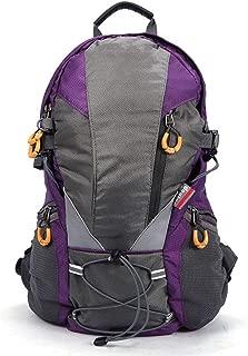 Rjj Outdoor Mountaineering Bag Ultra Light Backpack Men's Shoulder Bag Female Travel Bag Sports Walking Bag 30L to Send Rain Cover Exquisite (Color : Purple)