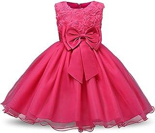 子供の女の子のドレス 女の子ノースリーブチュチュプリンセスドレスフラワーガールドレスラインの結婚式のページェントドレスホリデーパーティーチュールドレス 女の子のパーティーウェディングブライドメイドの王女のドレス (色 : ローズレッド)