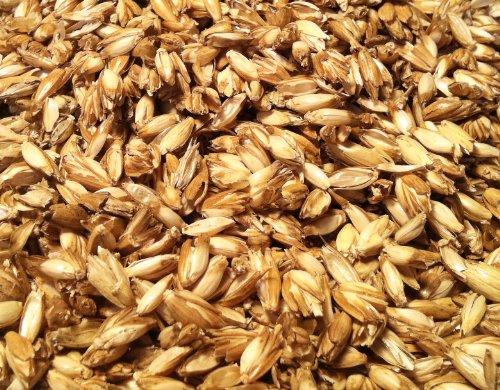 5 KG Bio Dinkelspelz Dinkelspreu Dinkelkissen aus kbA
