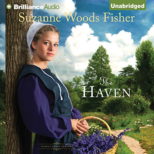 The Haven audiobook cover art