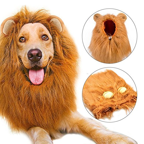 Etpark Cane Pet Costume, Grande Medio Cane Regolabile Parrucca leone con Orecchie per Halloween Natale Partito Vestire