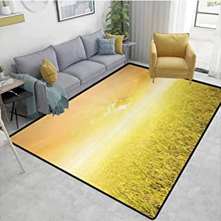 Yellow Home Decor Area Rug Rice Field Farm and Sunset Countryside Agriculture Sunlight Evening Cloudscape Dining Room Home Bedroom W71 x L82 Yellow Beige