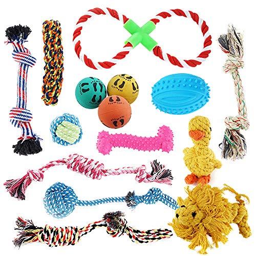 Pet Mania 15 Stück Hundespielzeug inkl. Kauspielzeug & Seile - Ungiftig, Geruchlos & Robust