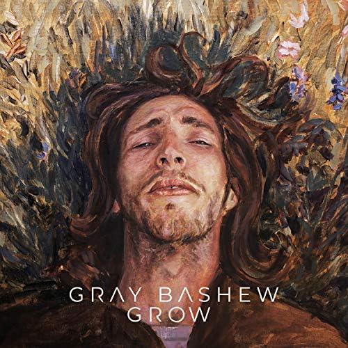 Gray Bashew