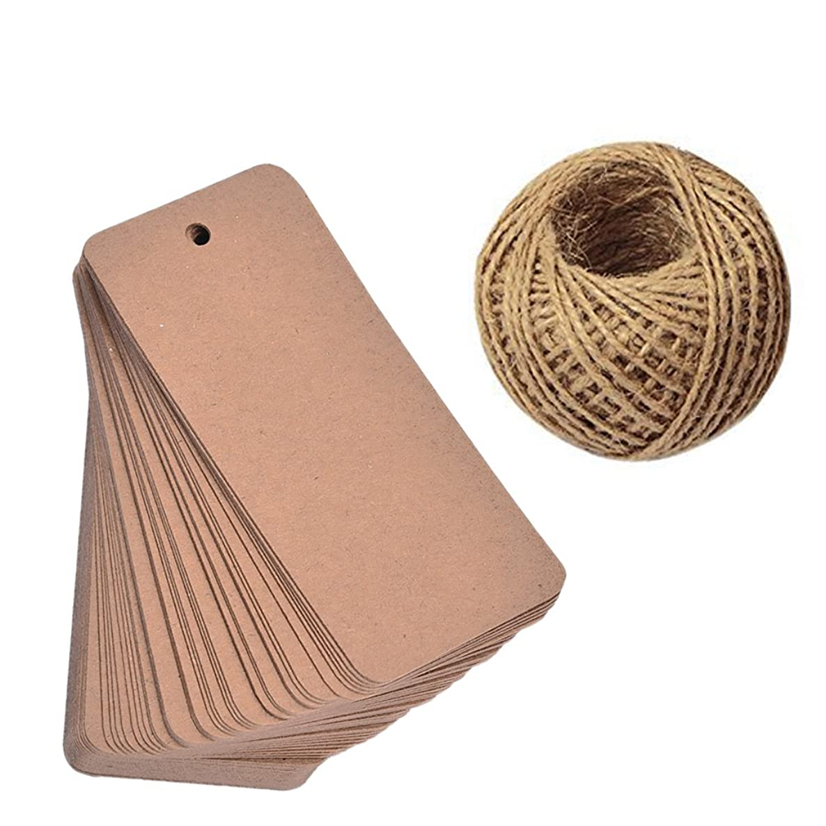 Lwestine 100 Feet Natural Jute Twine and 100PCS Brown Retangle Kraft Paper Gift Tags for Crafts & Price Tags Lables