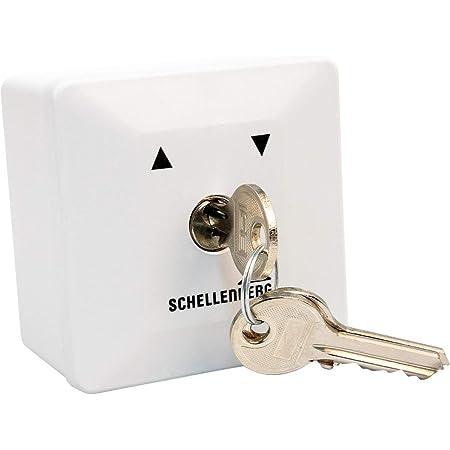 Schellenberg 25101 Schlüsselschalter Aufputz Austauschbarer Schließzylinder Inkl 3 Schlüssel Zur Steuerung Von Elektrischen Garagen Außen Und Drehtorantrieben Baumarkt