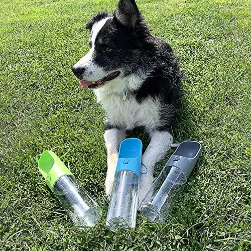 DZL- Botellas de agua