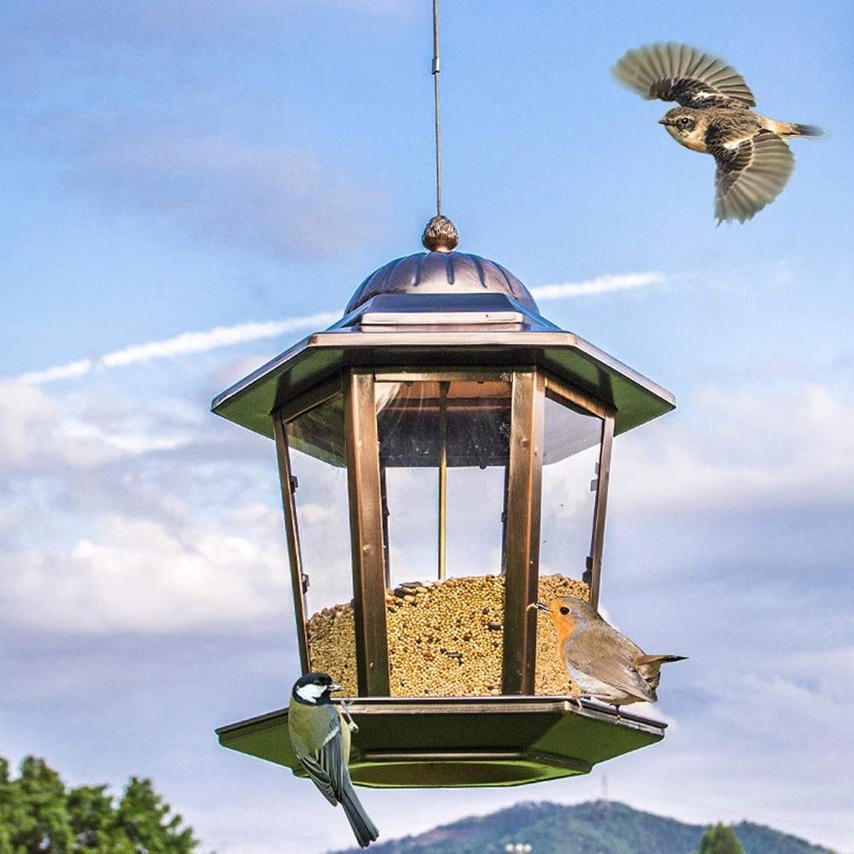 JWR Hanging Lantern Bird Seed -* Nutr Feeder Panorama Gazebo Style Feeders per giardino all'esterno