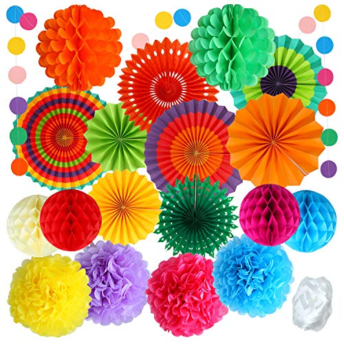 Aneco 20 Pieces Hanging Paper Fans Colorful Paper Pom Poms Flower Honeycomb Balls Rainbow Party Decorations for Birthdays Festivals Carnivals Graduation Christmas