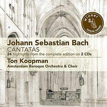Cantatas - 24 Highlights