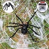 ハロウィーンの装飾、黒毛深いスパイダーとスパイダーウェブとスーパーストレッチクモの巣ハロウィン屋内および屋外の装飾