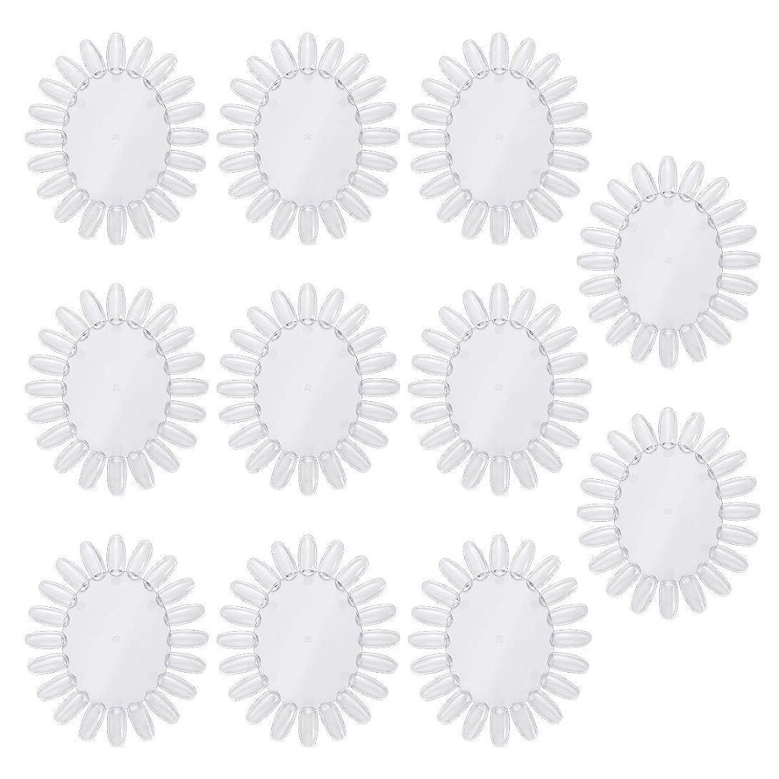 発行する制限された体系的にFrcolor 10個アクリルネイルアートプラクティスホイールポリッシュカラーディスプレイチャートネイルカラーパレット(透明)